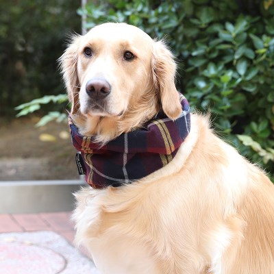 WINE BENI NECK WARMER