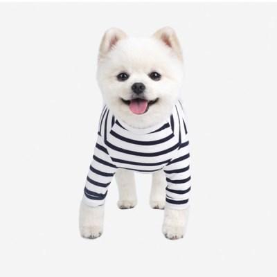 패리스독 강아지옷 기본스트라입티_(1013915)
