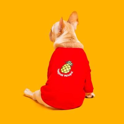 패리스독 강아지옷 트로피컬과일티_(1013914)