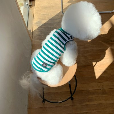 [T.탐스스트라이프민소매]Toms stripe sleeveless T_Green