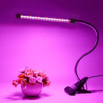 자바라 다육이 식물 성장 LED