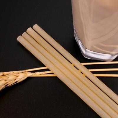 NPE 먹는 쌀빨대 식용 95+5개입 먹을수있는 타피오카 빨대