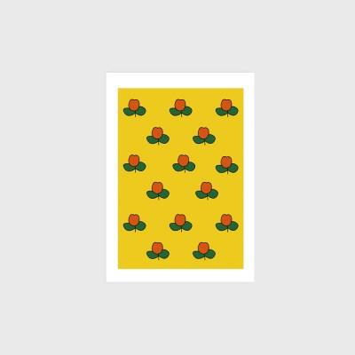 [엽서]Tulip field
