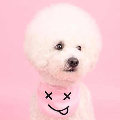 턱받이 빕(pink) Bib