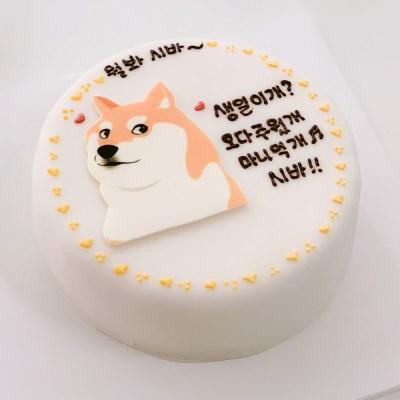남친생일 서프라이즈 파티 시바 서울레터링케이크