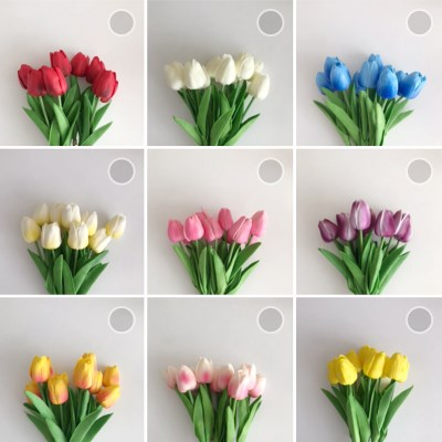 special price! My Tulip