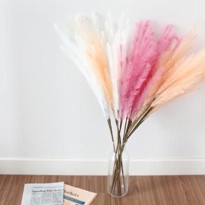 핑크뮬리 조화 팜파스 핑크 꽃 갈대 3color 플라워 인테리어 감성