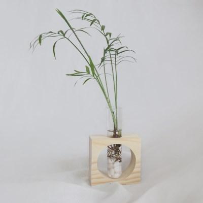 수경재배 원목 시험관