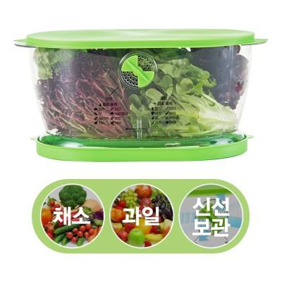 [이코트랜드] 신선 채소&과일 보관용기_(1400474)