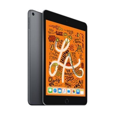 iPad mini 5세대 Wi-Fi 256GB 스페이스그레이