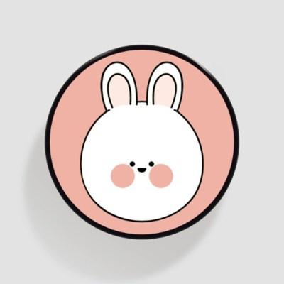 (플라톡) 핑크 퉁숙이_(852053)