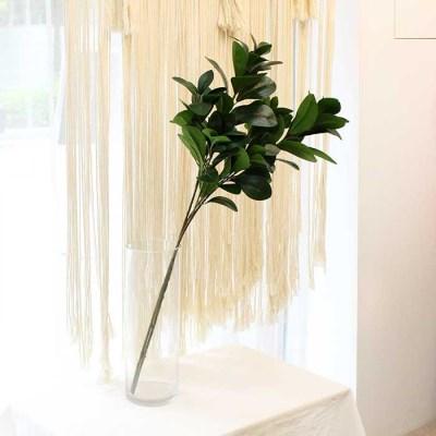 뱅갈 고무나무 조화 부쉬