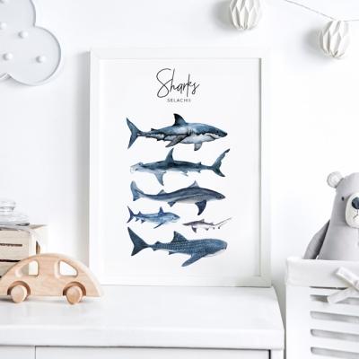 상어 아이방 액자 인테리어 그림 포스터
