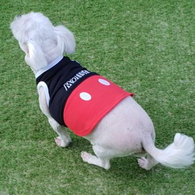 미키마우스 강아지 민소매티셔츠 메시소재 강아지티셔츠