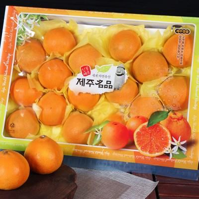 [제주연가]황금향 5kg 16~26과