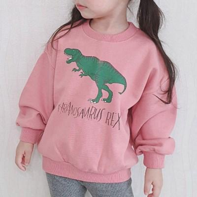 공룡 아동 맨투맨
