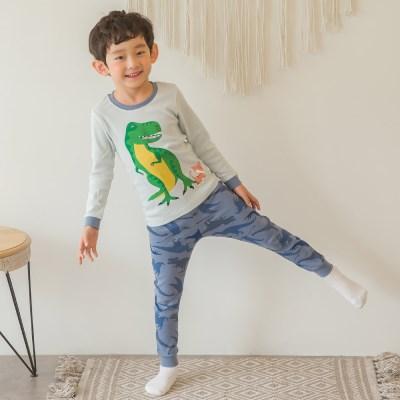 공룡아래냥이 오가닉 아동 실내복