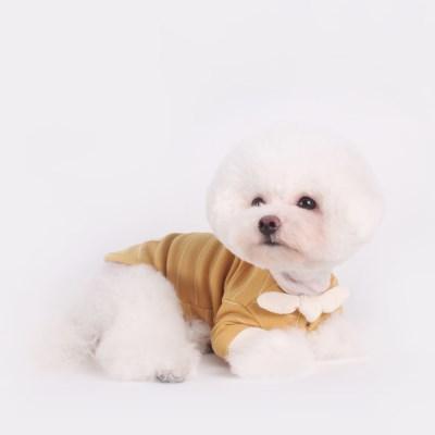 [T.쁘띠스카프티셔츠]petit scarf stripe T_Mustard