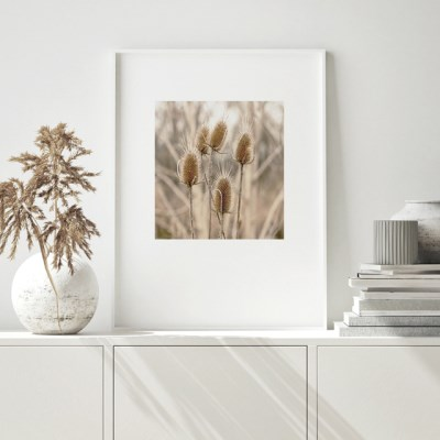 갈대 그림 가을 풍경 사진 인테리어 액자 폭스테일