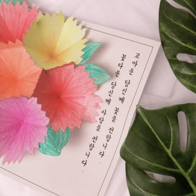 입체 카네이션 엽서 만들기 패키지 DIY (5인)