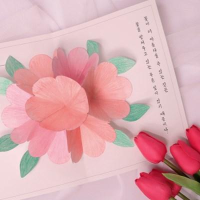 입체 벚꽃 엽서 만들기 패키지 DIY (5인)