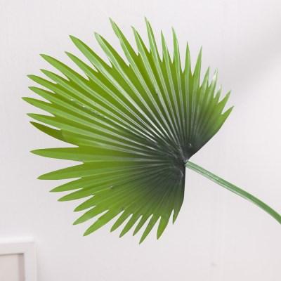 소철잎가지 FAIAFT 조화 꽃 인테리어소품_(1461205)