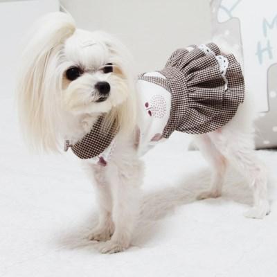 브라운체크 강아지원피스