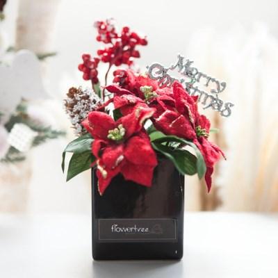 베리 포인 화분 30cmP 트리 크리스마스 TRFAHM_(1507517)