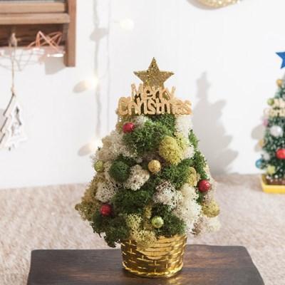 별 스칸디아 트리 25cmP 미니트리 크리스마스 TRHMES_(1511469)