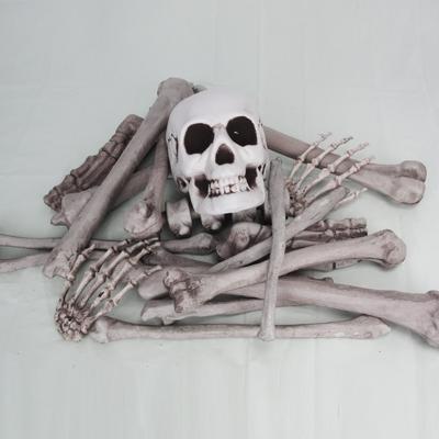 [파티스토리]할로윈 전신 뼈 19조각_(1396712)