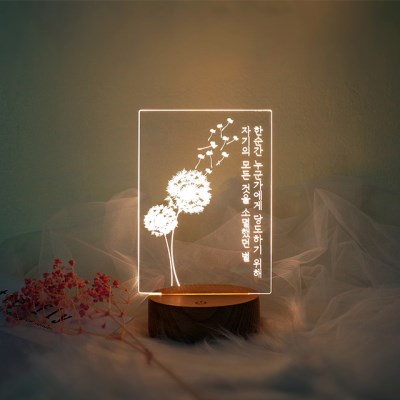 문구제작 민들레홀씨 LED 투명 아크릴 무드등