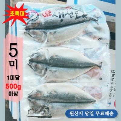 제주산 초특대 자반고등어 2.5kg 4.5kg (1미당 500g 이상)