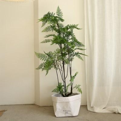 리데리 고사리 조화나무-실내인테리어,조화식물,화분,인_(100852030)