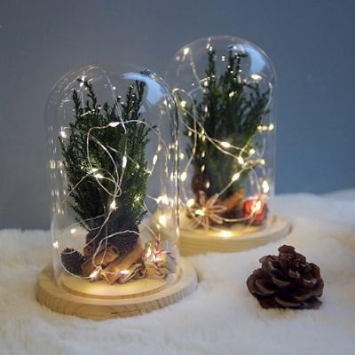크리스마스 트리 유리돔-프리저브드