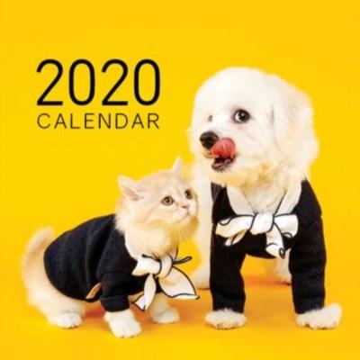 [1+1] 2020년 펫앤스토리 도그&캣 벽걸이달력