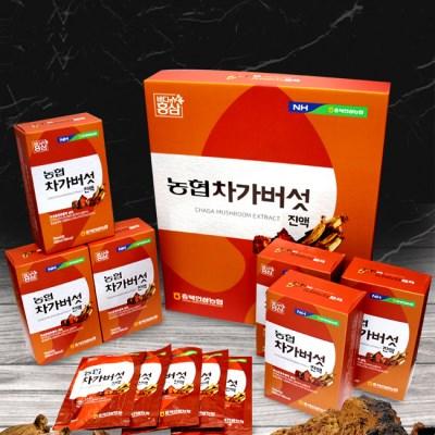 농협 차가버섯진액(70ml x 30포)100%러시아산 차가버섯