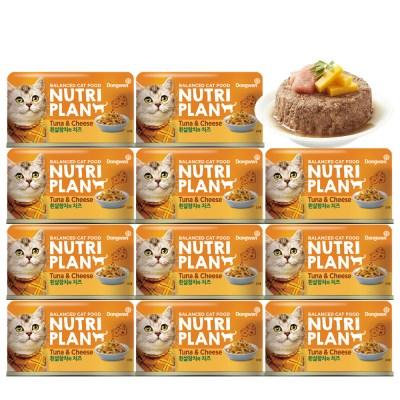 뉴트리플랜 참치와 치즈 160g x 12개 대용량 고양이캔_(843298)