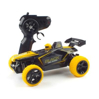 2WD 컨셉 레이싱 RC카 (QY425033YE) 작동알씨