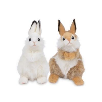 7449/7448 귀여운 토끼인형 세트  24cm.H_(1514327)