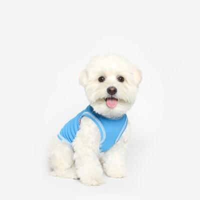 강아지 쿨 민소매 (블루)