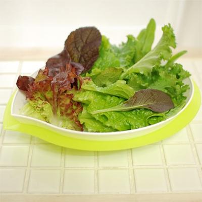 물받침 야채 채반 세트
