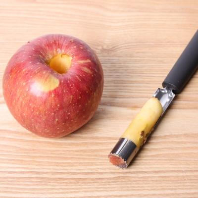 애플 코러(Apple Corer)