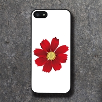 'CHAJI' HANA RED BLACK CASE