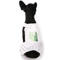 Cactus overalls