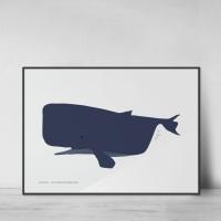 Whale's Blue no.01
