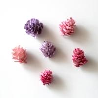 미니 컬러 솔방울(한봉지)