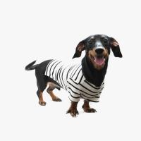Casual Stripe T-shirt Black