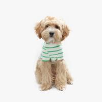 Casual Stripe T-shirt Green