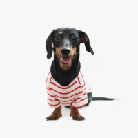 Casual Stripe T-shirt Red