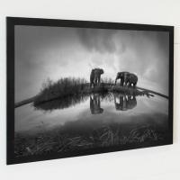 포토프레임 액자 / FA087 코끼리 세마리